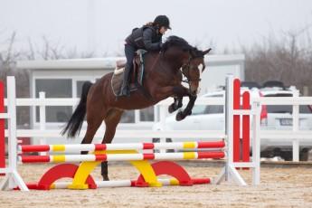 HorseBase_23