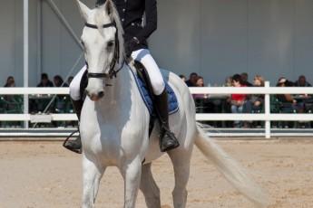 HorseBase People_1041