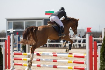 HorseBase People_131