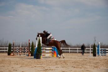 HorseBase People_492