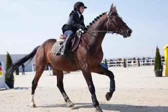 HorseBase People_647