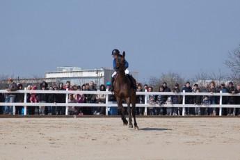HorseBase People_650