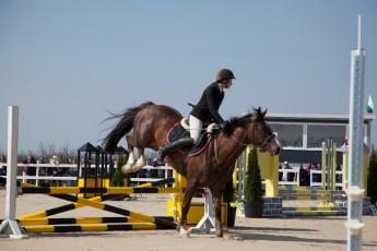 HorseBase People_674