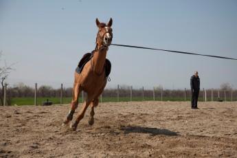 HorseBase People_770