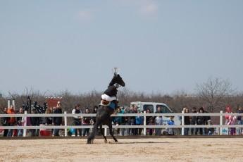 HorseBase People_898
