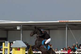 HorseBase People_911
