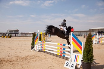 HorseBase People_982